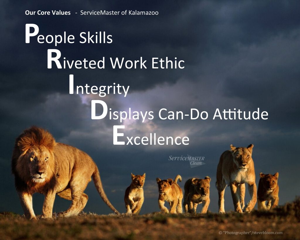 PRIDE core values