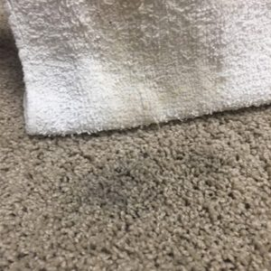 cloth-soaking-up-wax-from-carpet