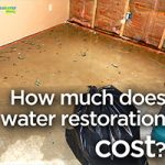 How Much Does Water Damage Restoration Cost?