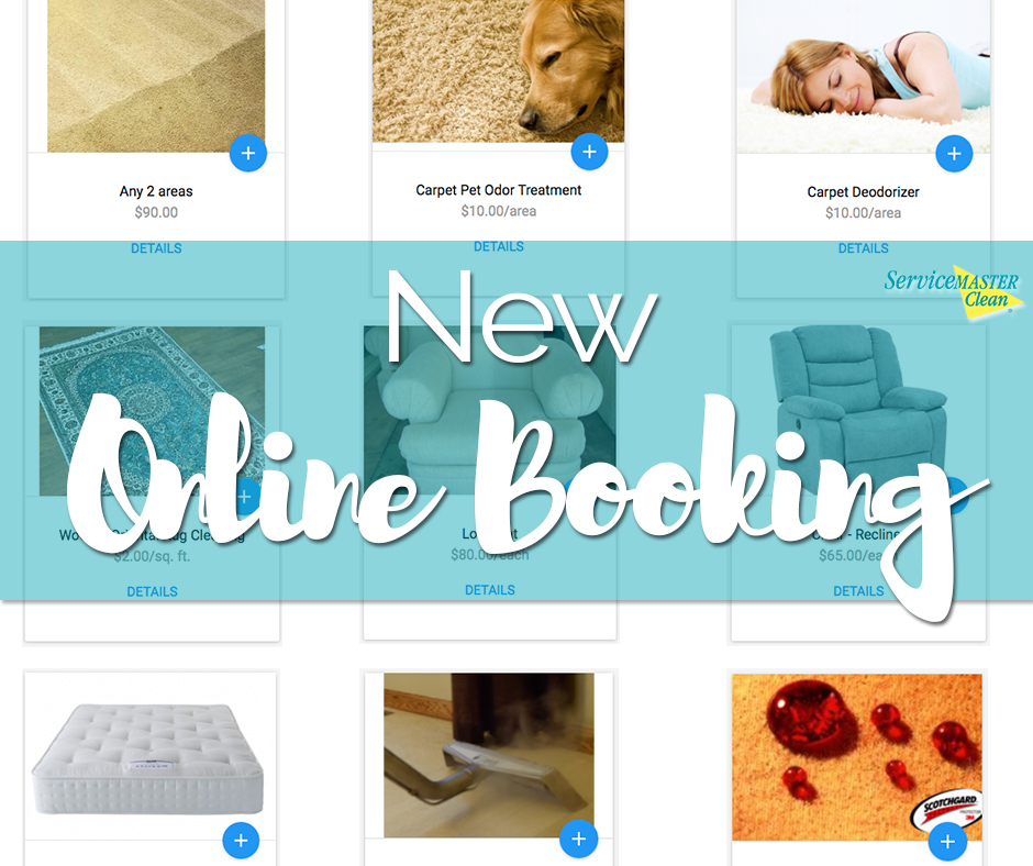 online booking CTA for home carpet and upholstery cleaning