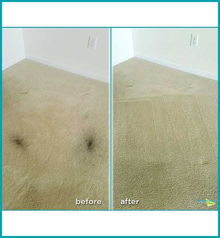 before and after carpet cleaning beige light carpet