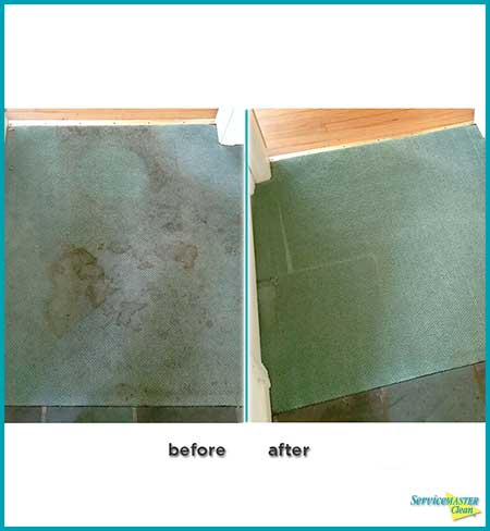 entryway green carpet before and after carpet cleaning