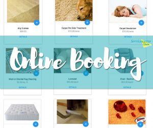 book carpet cleaning online