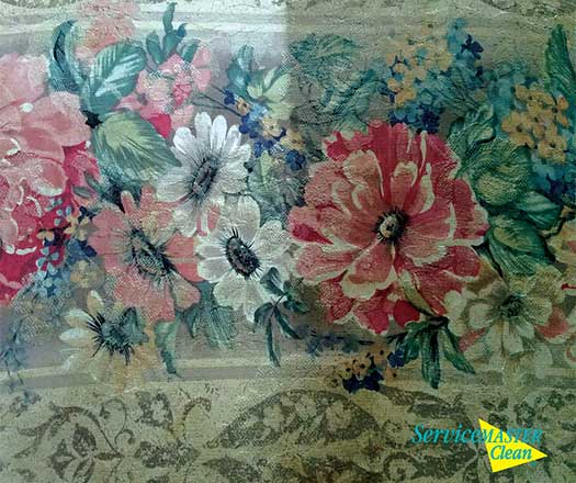 upholstery-fabric-cleaning-best-process-in-southwest-michigan