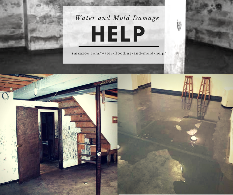 water and mold damage in basement