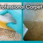 diy vs professional carpet cleaning