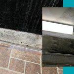 mold remediation kalamazoo