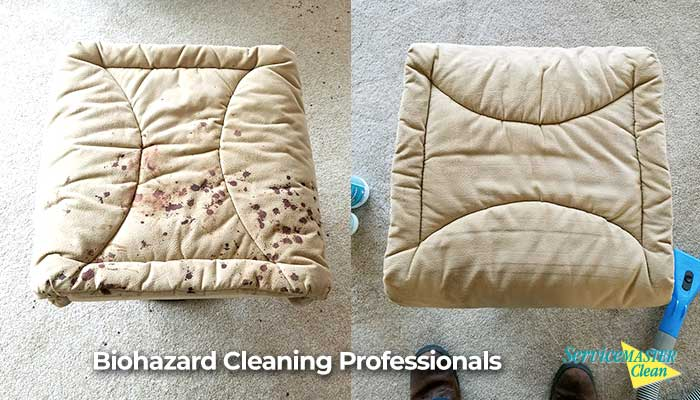 blood cleaning before and after